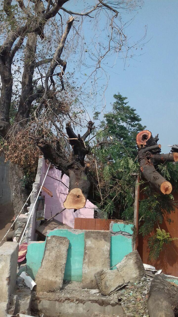 புயலினால் பாதிக்கப்பட்டுள்ள கும்மிடிப்பூண்டி ஈழத்தமிழர் முகாமுக்கு உதவுங்கள் vardha cyclone disaster gummidipoondi eelam camp naam tamilar help6